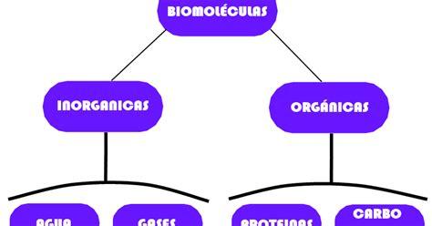BioBlogger: Las Biomoleculas
