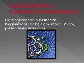 Bioelementos o elementos biogenesicos