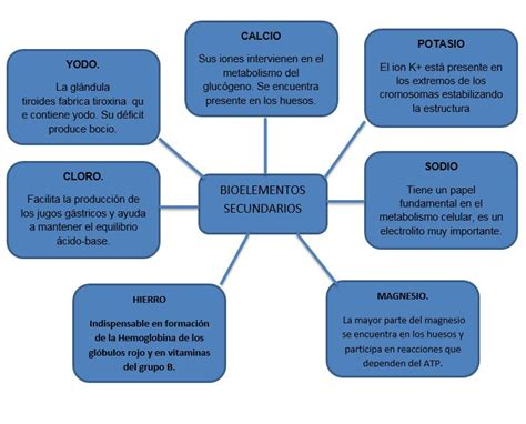 BIOELEMENTOS & OLIGOELEMENTOS: BIOELEMENTOS SECUNDARIOS