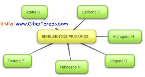 Bioelementos Primarios – Mapa Mental | CiberTareas