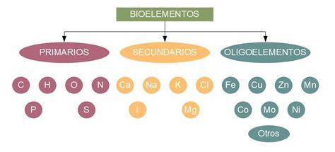 Bioelementos y biomoléculas: estructura y funciones ...