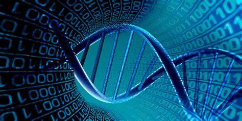 Bioinformática: el estudio de los genes mediante ...