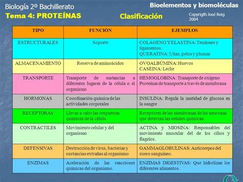 Biología 2º Bachillerato - ppt descargar
