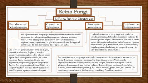 Biologia: Clasificacion del Reino Fungi