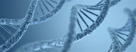 Biología molecular aplicada al sector energético - repsol.com