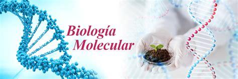 Biología Molecular | CIBE