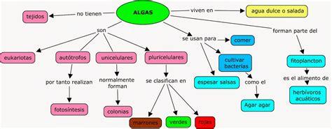 Biología y Geología 1º ESO: MAPA CONCEPTUAL ALGAS. Cómo ...