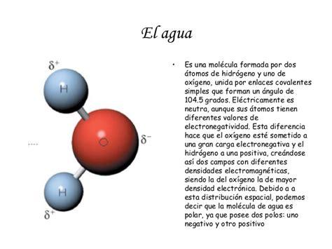 Biologia2bto