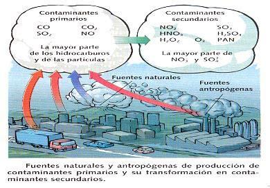 BiologíaSur   La contaminación atmosférica