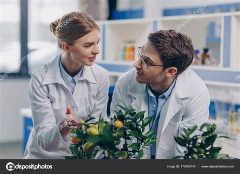 biólogos com plantas de limão em laboratório — Stock Photo ...