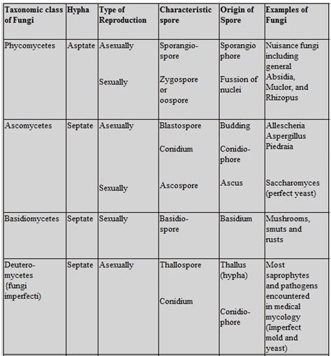 Biology   Biological Classification Revision Notes for ...