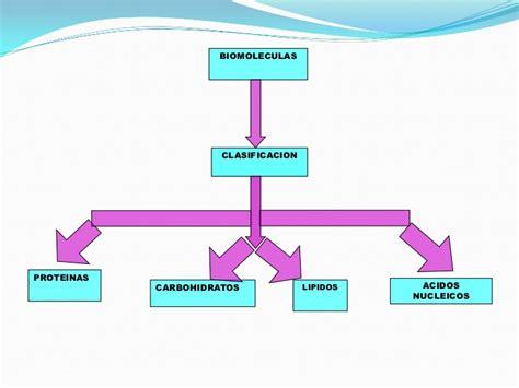 Biomoleculas(1)