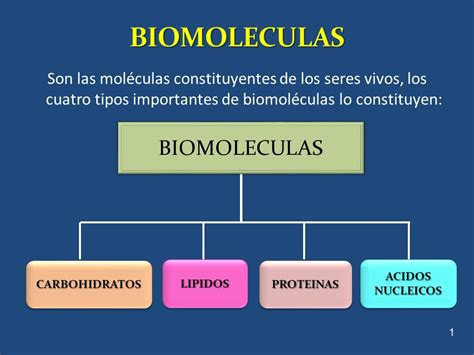 BIOMOLECULAS BIOMOLECULAS - ppt video online descargar