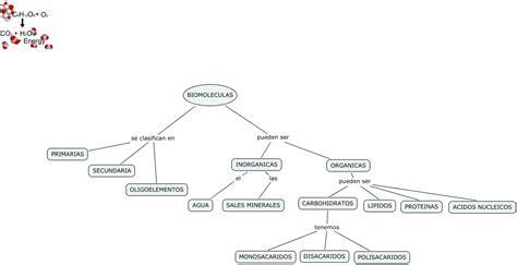 Biomoleculas - clasificacion