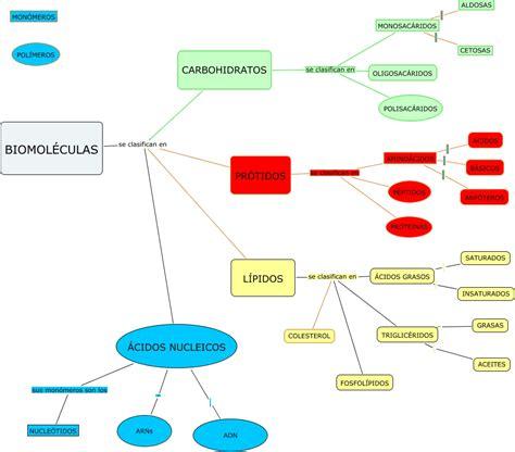 BIOMOLÉCULAS - Clasificación
