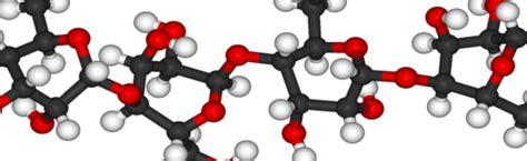 Biomoléculas Definión , Tipos de biomoléculas, ADN Y ARN ...