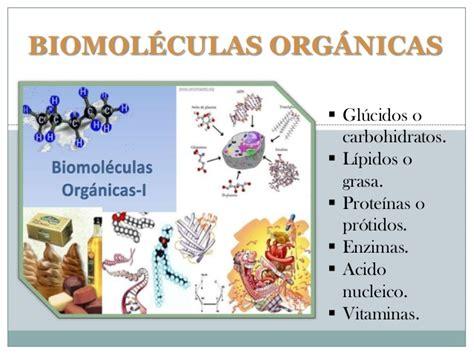 Biomoléculas orgánicas biologia