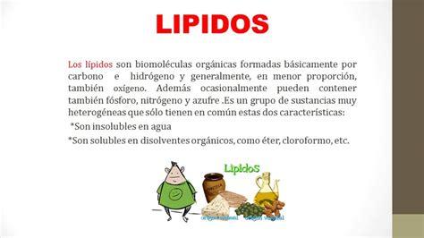 BIOMOLÉCULAS ORGÁNICAS CARBOHIDRATOS, LÍPIDOS, ÁCIDOS ...