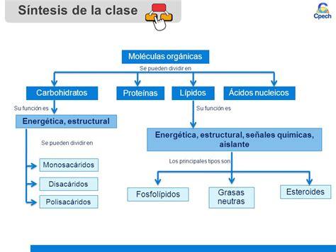 Biomoléculas orgánicas: carbohidratos y lípidos - ppt ...