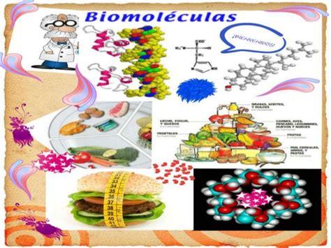 Biomoléculas orgánicas e inorgánicas