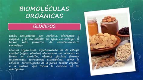 Biomoléculas Orgánicas E Inorgánicas. - YouTube