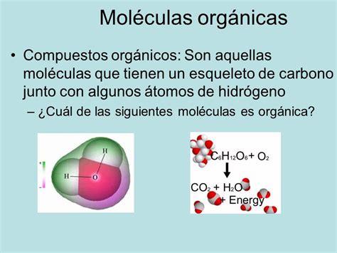 Biomoléculas Orgánicas - ppt descargar
