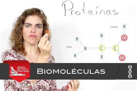 Biomoléculas orgánicas │biología - YouTube