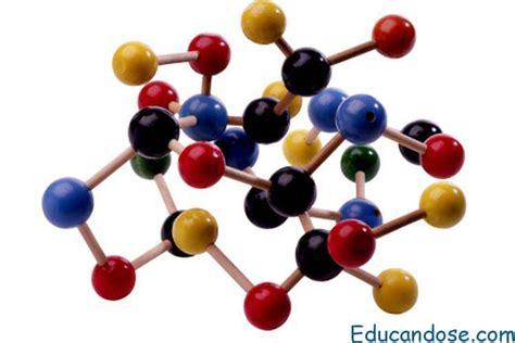 Biomoléculas Tipos y funciones   ⊛ 【 Educándose En Línea