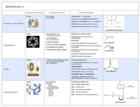 Biomoléculas -- XMind Online Library