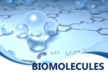 BioMOLECULES THE STUFF OF LIFE. - ppt video online download