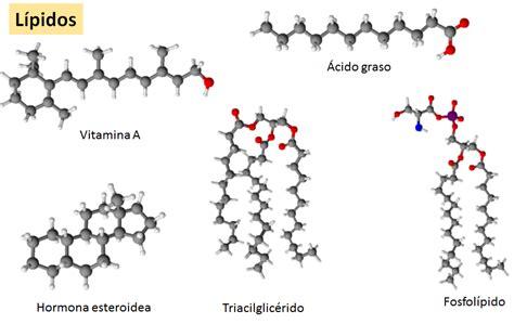 Bioquimica: Lípidos y Membranas