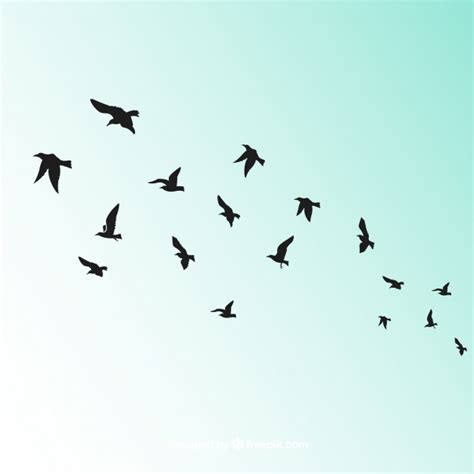 Bird Flight Vectors, Photos and PSD files | Free Download