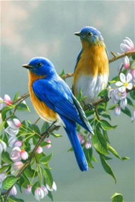 Birds Are Singing Quotes. QuotesGram
