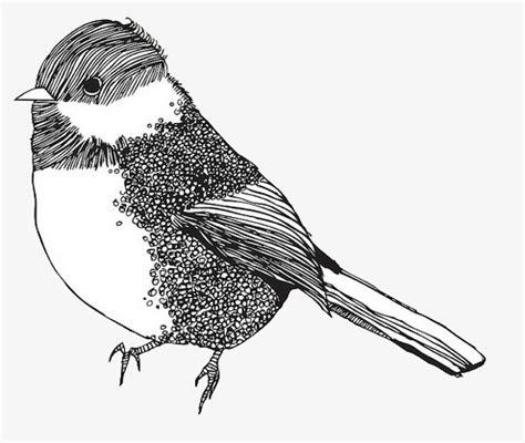 Blanco Y Negro Pájaros Pintados A Mano, Ave, Dibujo De ...