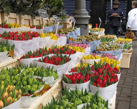 Bloemenmarkt, el mercado de las flores de Ámsterdam