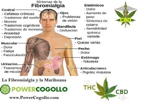 Blog PowerCogollo Dr.Cogollo GrowShop   La Fibromialgia y ...