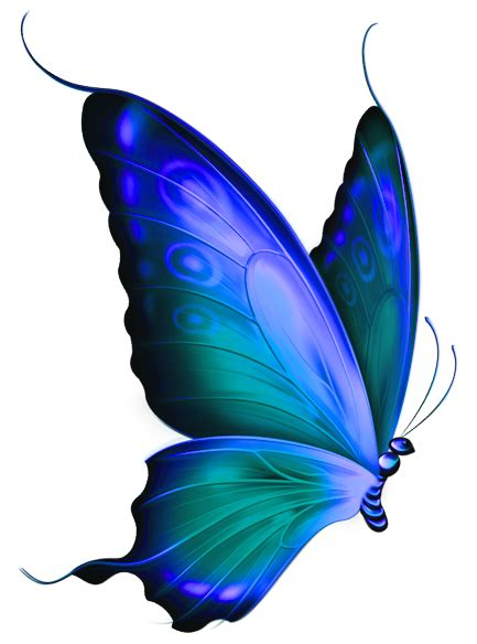 Blue Butterfly Clipart | Clipart Panda - Free Clipart Images