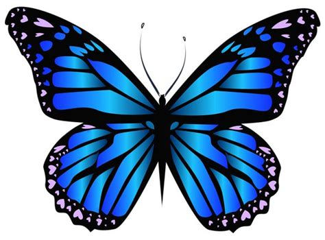 Blue Butterfly PNG Clipar Image | Butterfly Project ...
