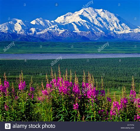 blue mountains national park - Bing