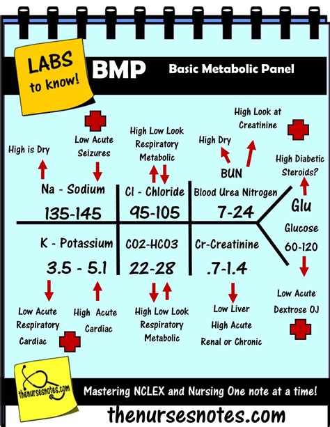 BMP Chem7 Fishbone Diagram explaining labs - From the ...