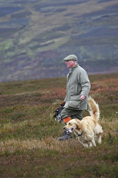 Bolton Hall: Grouse shooting in North Yorkshire   Shooting UK