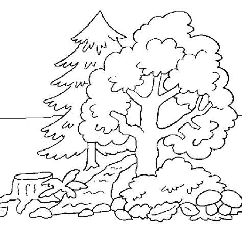 Bosques para Colorear para Niños con algunos Animales ...