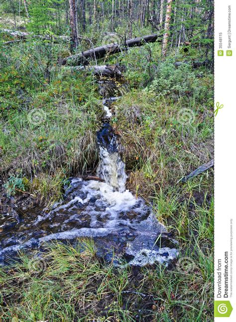Brook In The Grass. Royalty Free Stock Photo   Image: 35548115