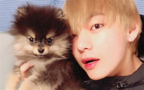 BTS s V Receives Praise From Trainer For His Attitude When ...