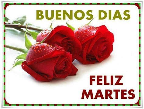 Buenos Días. Feliz Martes   TnRelaciones