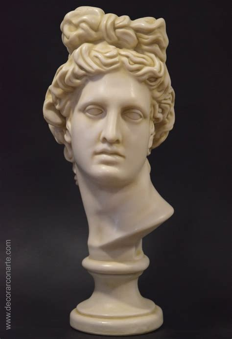Bust of Apollo of Belvedere. Marble. 55cm - Decorative ...