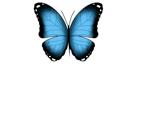 Butterfly Animated Gif Transparent