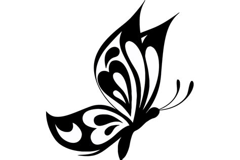 Butterfly Svg Pictures to Pin on Pinterest - PinsDaddy