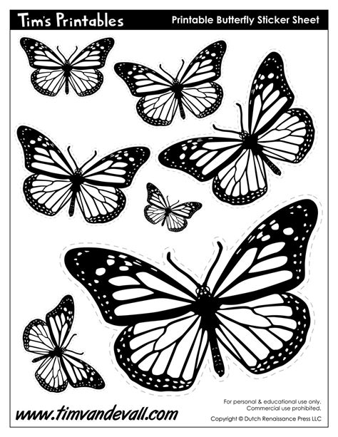 Butterfly Templates - Tim's Printables
