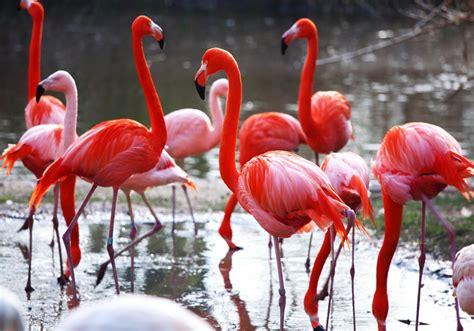 Cabo de Gata: el oasis ecológico que fue plató de cine y ...